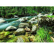 Mountain Stream in Yosemite Photographic Print