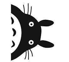 Surprise,Totoro! Photographic Print