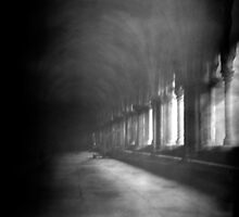 Cloisters by AliceSnaps