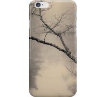 Three Mile River II Toned iPhone Case/Skin
