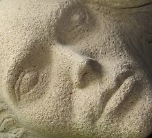 The Stone Face by terrierdog
