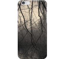 Three Mile River III Toned iPhone Case/Skin