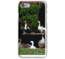 Geese Allowed........ iPhone Case/Skin