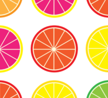 Citrus burst Sticker