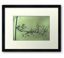 Abstract 15 Framed Print
