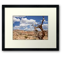 The Tree at Ghost Ranch Framed Print