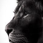 Proud by liberthine01