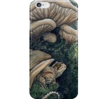 Northern Dwarf Dragon iPhone Case/Skin
