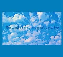 The wind rises quote by Ashley Renfro