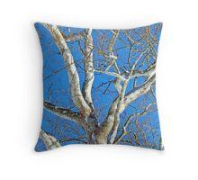 American Sycamore (Platanus occidentalis) Tree Throw Pillow