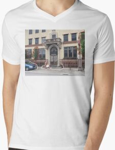 The Chelsea Mens V-Neck T-Shirt