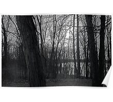 Reservoir Trees Poster