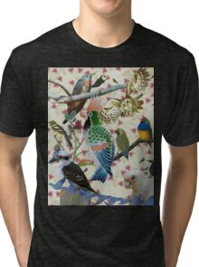 Pretty Birdies Tri-blend T-Shirt