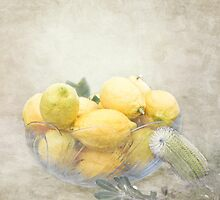 Banksia and Lemons by Linda Lees