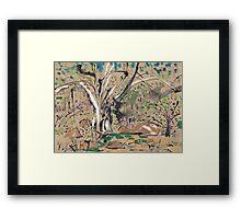 Millstream Pond Framed Print