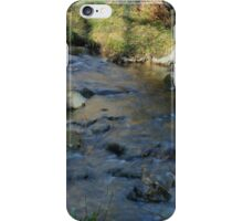 FLOWING iPhone Case/Skin