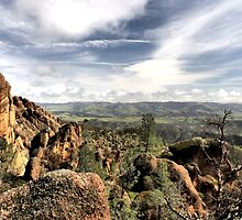 Pinnacles National Park by Rosalee Lustig