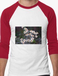 Small white flowers in the garden. Men's Baseball ¾ T-Shirt
