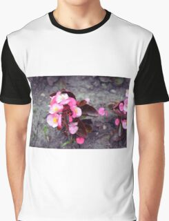 Small pink flowers on dry land. Graphic T-Shirt