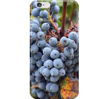 Detail of wine grapes. iPhone Case/Skin