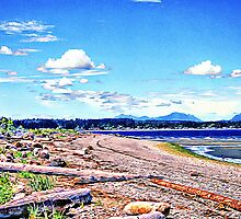 Beachcomber's Dream by Gail Bridger