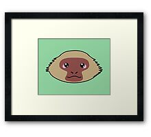 Japanese macaque - The snow monkey Framed Print