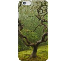 Japanese Maple in a Winter Fog iPhone Case/Skin