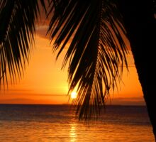 Tropical Palm Tree Ocean Sunset Print Tee Sticker