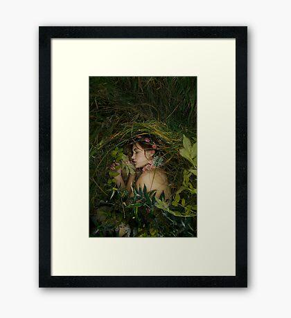 The burial I Framed Print