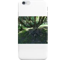 Uncovering the Roots iPhone Case/Skin