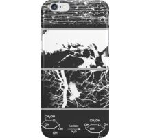 Slices of Life iPhone Case/Skin