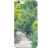 Lead the Way iPhone Case/Skin