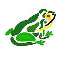 Cool Artistic Green Frog Abstract Art Photographic Print