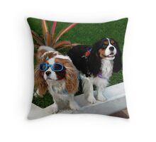 ☆*'*☆* °♥ ˚ • ★ *˚ We Got A Groovy Kinda Love - Cavaliers Canine Throw Pillow ☆*'*☆* °♥ ˚ • ★ *˚ Throw Pillow