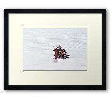 Sticking together Framed Print