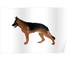 German Shepherd: Red & Black Poster