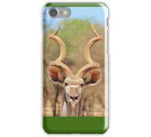 Kudu - African Wildlife Background - Spiral Beauty iPhone Case/Skin