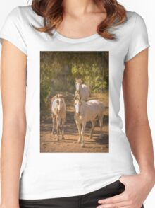 Three four-legged friends Women's Fitted Scoop T-Shirt