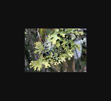 Three kinds of Lichen, Cradle Mountain, Tasmania, Australia. Unisex T-Shirt