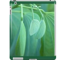 New Beginnings - Soft and Tender iPad Case/Skin
