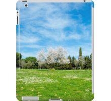 16 - Panorama iPad Case/Skin