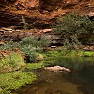 Dales Gorge Karijini National Park by Austin Dean