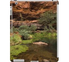 Dales Gorge Karijini National Park iPad Case/Skin