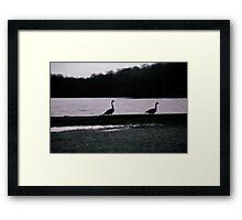 Geese Trek Framed Print