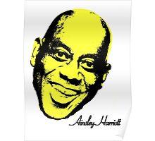 Ainsley Harriott (harriot) Warhol - Velvet Underground Poster