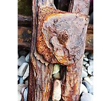 The Art of Rust Photographic Print