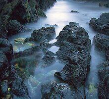 Seal Rocks by David Haworth