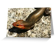 Lizard 01 Greeting Card