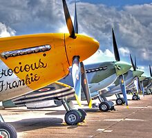 Warbird Flighline - Duxford 2014 - HDR by Colin  Williams Photography