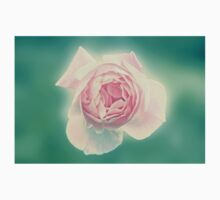 Digitally manipulated painting of a Pink English rose as seen from above  Kids Tee